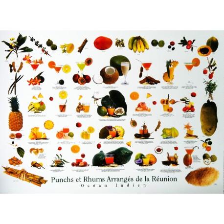 Les posters  Rhums et Punch de La Réunion Jade