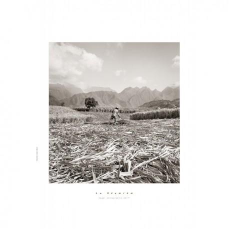 """Les posters d'Edgar La Réunion """"Coupeur cannes à la ravine des Cabris""""."""