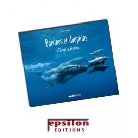 Baleines et dauphins à l'île de la Réunion