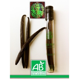 Vanille Bio fraîche  gousse 13 cm de qualité gastronomie label AB