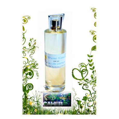 Eau de Parfum Brume Vanille : Le nouveau parfum de Boutique Australe