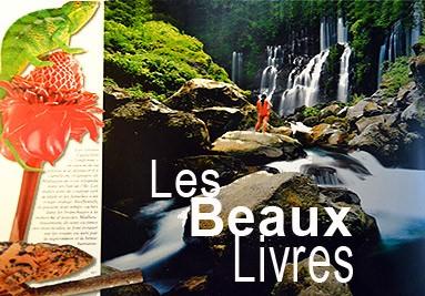 Les livres sur La Réunion